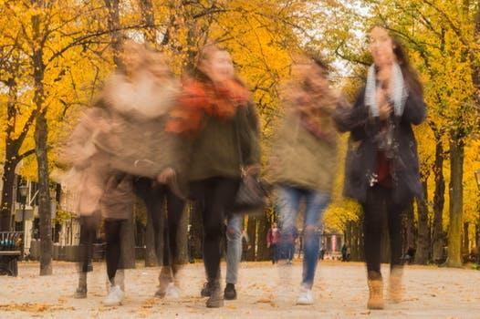 Leadership al femminile? 5 idee ispirate alla natura